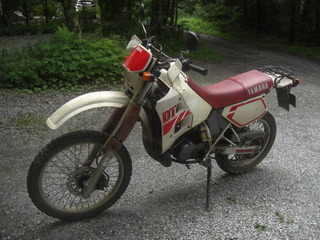 CIMG5534.JPG